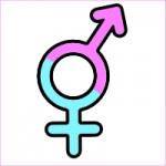 4- Trans*